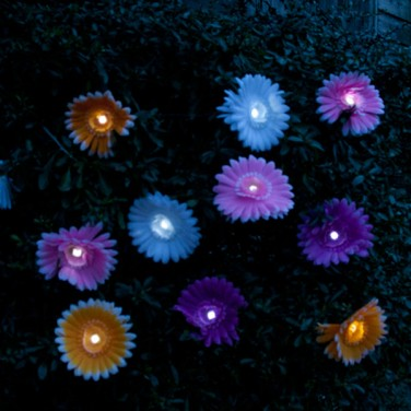 Solar Daisy Stringlights