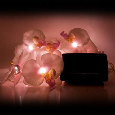 Solar Orchid Fairy Lights
